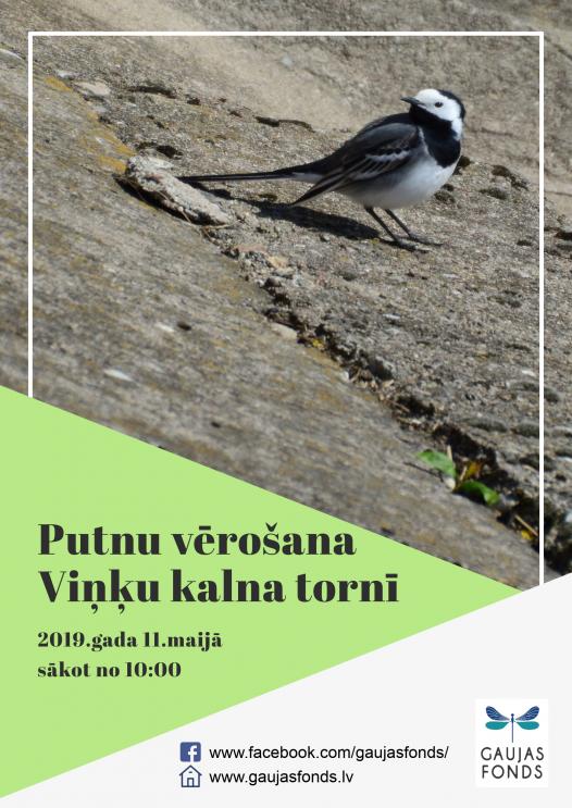 Vinku_kalns_11.05.